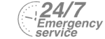 24/7 Emergency Service Pest Control in Leatherhead, Oxshott, Fetcham, KT22. Call Now! 020 8166 9746